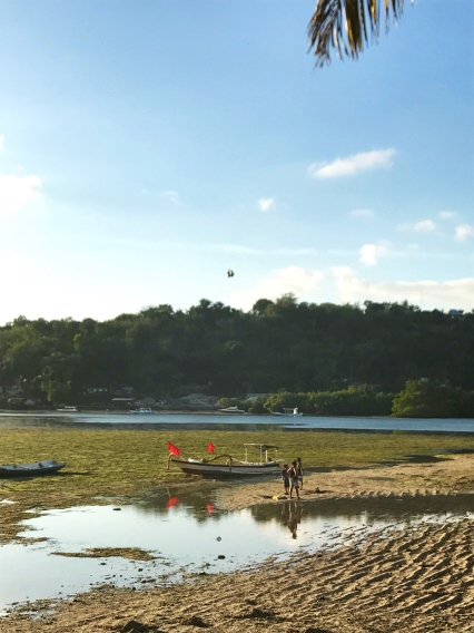 Kite-flying at Seaweed Farms