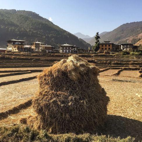 Village of Chimi Lhakhang