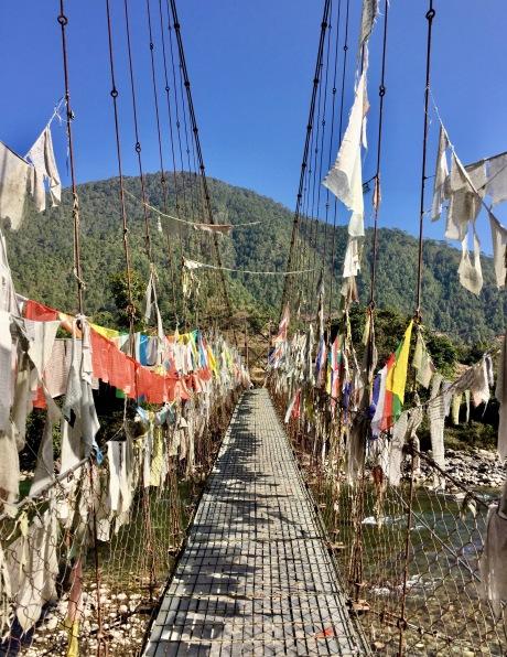 Chimi Lhakhang - 1